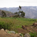Farming lands on the green slopes in Khapi, below Mount Illimani.