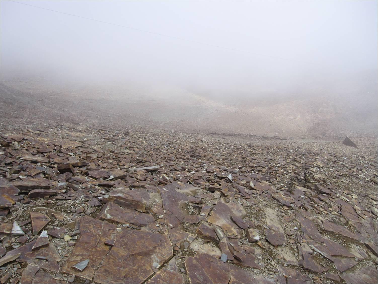 http://cambioclimatico.terra-justa.org/p315